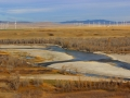 Old Man River Near Brocket, Alberta 2015 10 23 IMG_3471