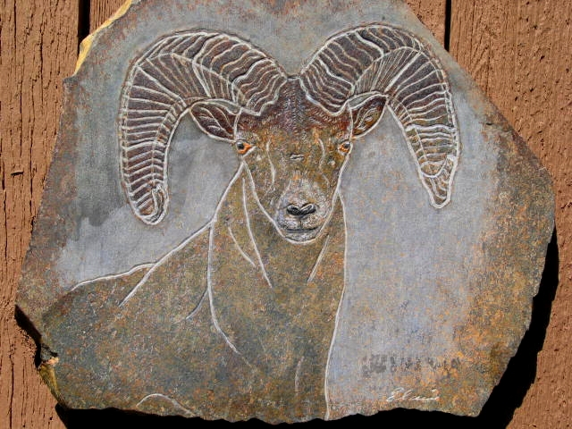 BLUE SPIRIT - Big Horn Sheep Ram - RSC 16