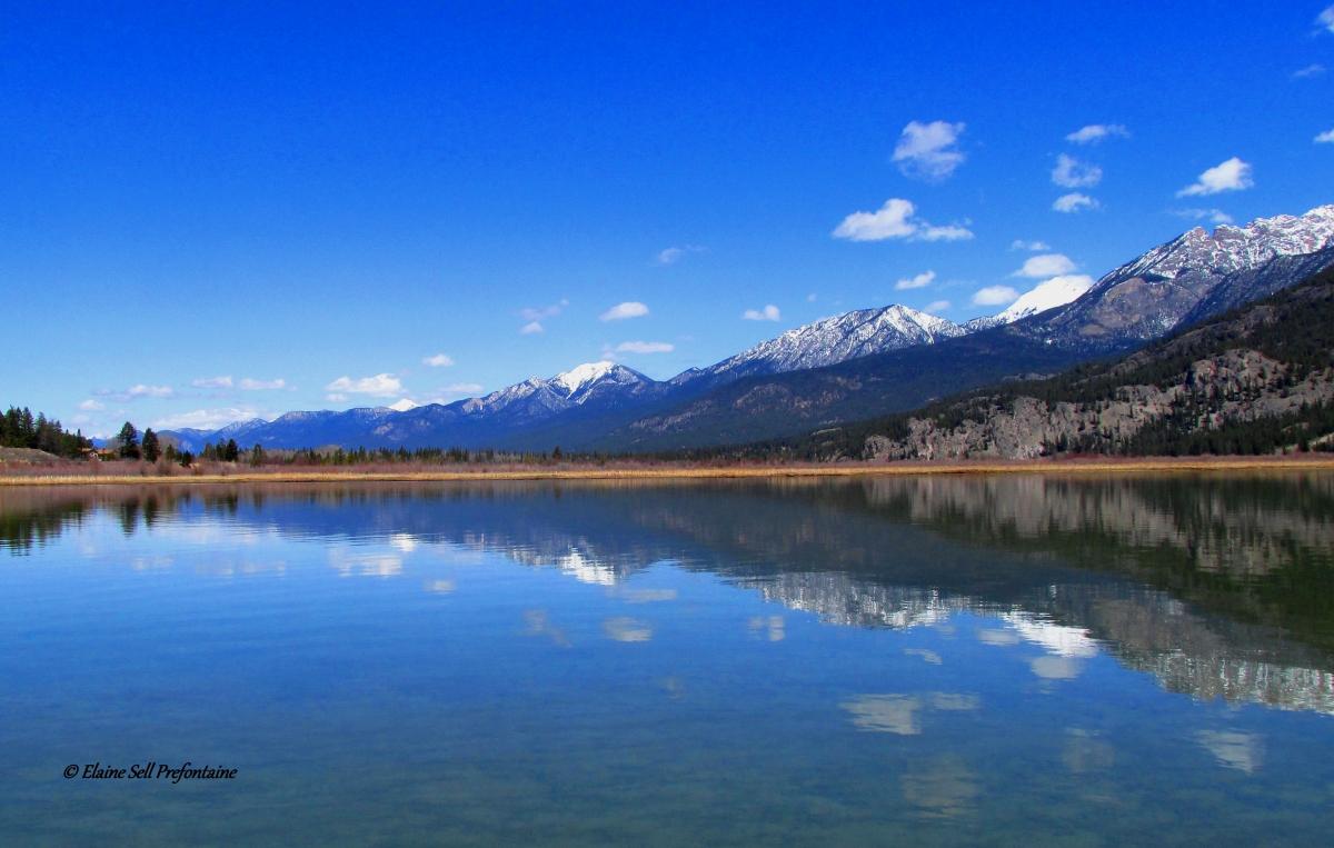Columbia Lake North in April - 2018 04 19 IMG_1270