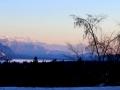 Columbia Lake December Sunset   2013 12 07   IMG 7456