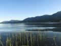Columbia Lake Evening    2014 07 07 IMG_1198