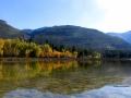 Columbia Lake Prov Park Fall Colors 2015 09 29 IMG_6943