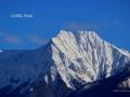 Chisel Peak BC - February Snow 2016 01 04 IMG_4846