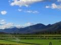 Coys Dutch Creek Ranch Irrigation 2016 07 04 IMG_8421 pic