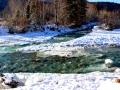 Dutch Creek Channels Green Waters 2014 12 29 IMG_7059