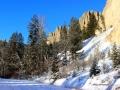 Dutch Creek Hoodoos Winter Trail 2014 12 29 IMG_7049