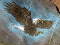 eagle-flight-engraved-img_1103