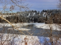 Koootenay River in December - By Skookumchuk BC Bridge 2013 12 10 IMG_7477