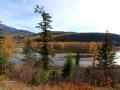 Elk River BC Near Elko October 2015 10 23 IMG_3259