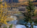 Elk River BC Autumn Waters 2015 10 23 IMG_3268