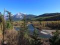 Elk River, BC - Autumn Splendor 2016 10 12 IMG_8355