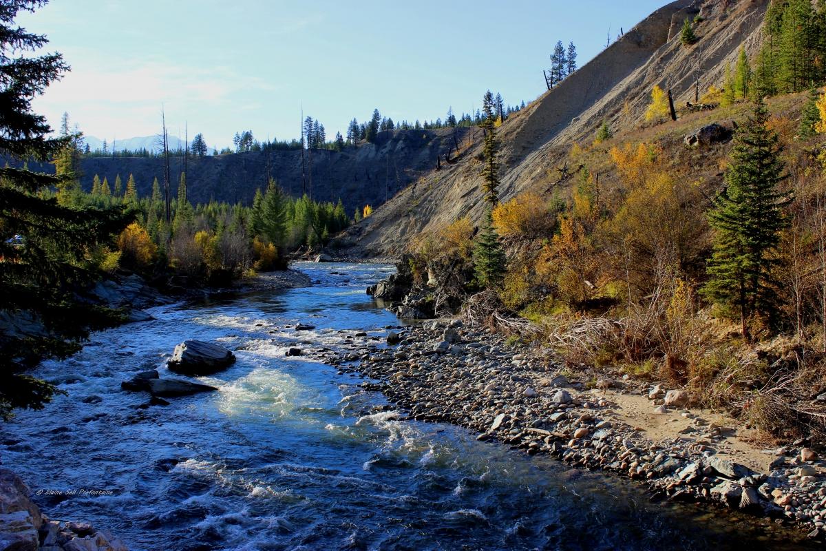 Findlay Creek BC at Lavington Bridge  - October -  IMG_6332