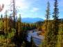 Findlay Creek Area