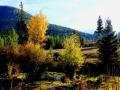 A Stunning Findlay Area Fall   2013 10 06   IMG_6370