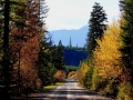 Findlay Creek Area Fall - Driving West on Lavington Road  2013 10 06  Trim IMG_6182