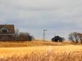Prairie Homestead By Hwy 2 South of Moose Jaw 2013 10 21 Trim IMG_6838