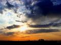 Horses Sunset Silhouette 2015 05 24 IMG_9632