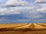 Prairie Vistas