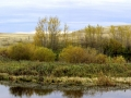 Pastel Autumn Sloughs - Hwy 1 West of Moose Jaw 2014 10 08 Stitch IMGS 5617-18