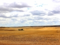 Spring Seeding In Big Sky Country - SW of Rockglen Sask 2014 05 17 IMG_9488