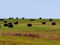 Saskatchewan - Bales and Big Skies IMG_8052