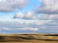 Saskatchewan - Big Sky Rolling Hills Country 2016 09 24 IMG_7701