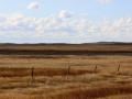 Prairie Winds in Grasses 2013 10 14 IMG_6717